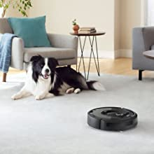 the Roomba i7+, premium best robot vacuum, is ideal for homes with pets